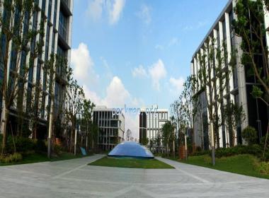 上海南汇工业园区 –上海智城园区